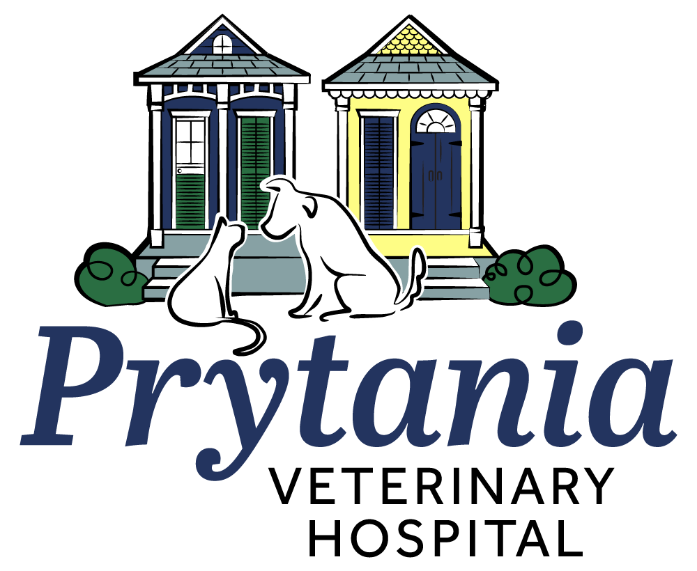 Prytania Veterinary Hospital